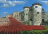 Tower of London Poppies - Blood Swept Lands and Seas of Red